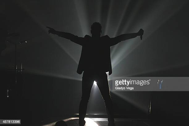David Bisbal performs in his concert 'Tu y Yo' at Coliseo Jose M Agrelot on October 24 2014 in San Juan Puerto Rico