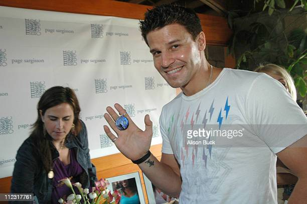 David Boreanaz at Page Sargisson during Golden Globes Style Lounge Presented by Kari Feinstein PR Day 2 in Los Angeles California United States