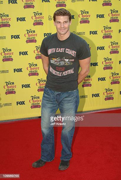 David Boreanaz during 2005 Teen Choice Awards Arrivals at Gibson Amphitheater in Universal City California United States