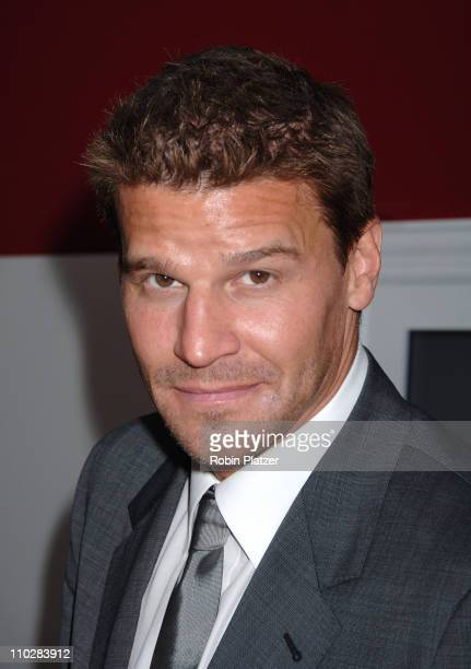 David Boreanaz during Fox 2006 Upfront at Guastavino's in New York City New York United States