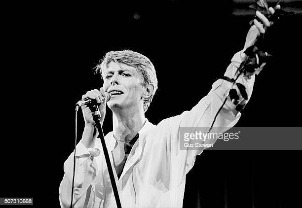 David Bowie performs on stage on Low And Heroes World Tour at Earls Court in London on 29th June 1978