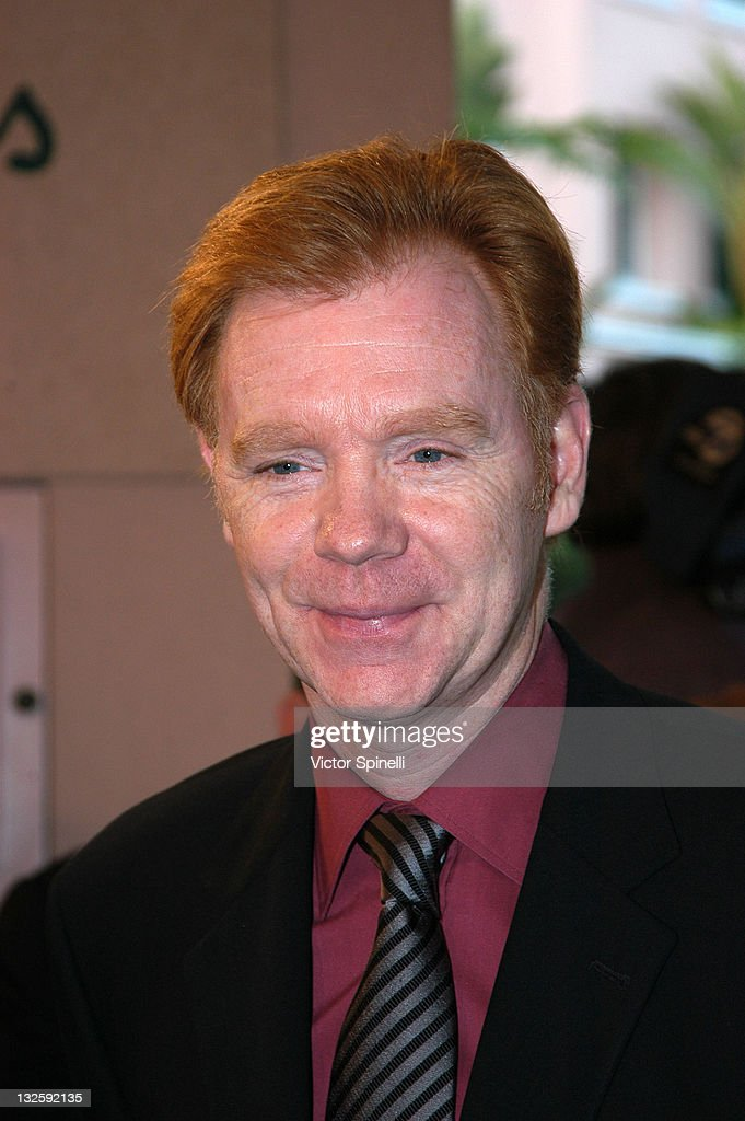 <a gi-track='captionPersonalityLinkClicked' href=/galleries/search?phrase=David+Caruso&family=editorial&specificpeople=208972 ng-click='$event.stopPropagation()'>David Caruso</a> during 14th Annual Night of 100 Stars Oscar Gala at Beverly Hills Hotel in Beverly Hills, California, United States.