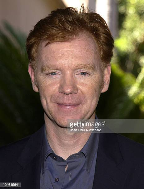 david caruso - photo #41