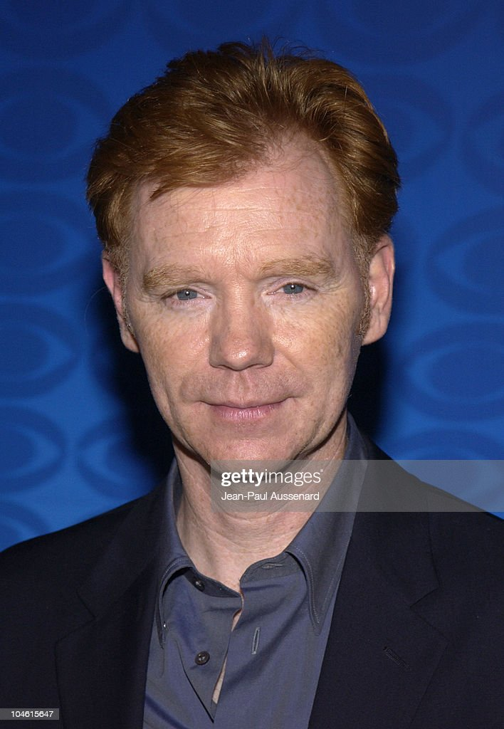 david caruso - photo #17