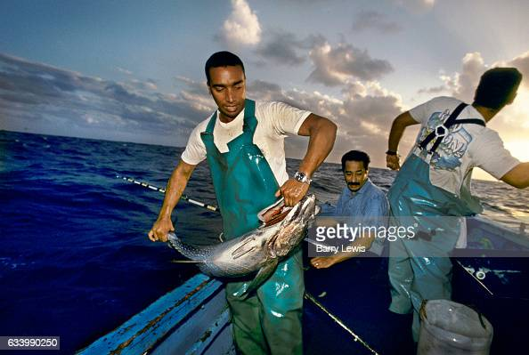 David Cassel catching one of the plentyful tuna for the islands resturant 27th May 1997 on Ascension a small isolated volcanic island in the...