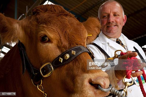 David Cormack is something of a celebrity in the cattlebreeding world not only by dint of his family but also because in 2007 Cormack took an...