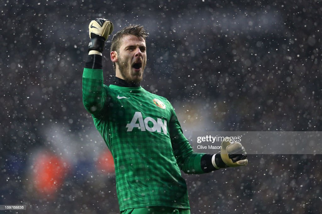 David De Gea of Manchester United celebrates as Robin van Persie of Manchester United scores the opening goal during the Barclays Premier League match between Tottenham Hotspur and Manchester United at White Hart Lane on January 20, 2013 in London, England.