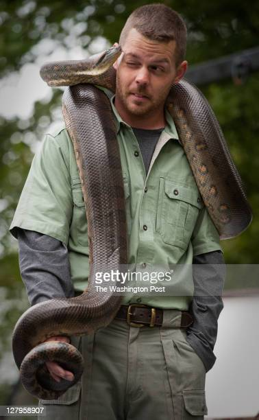 David Deane from Reptlie World Inc out of Annapolis holds a Green Anaconda on the kids stage of the event The 44th Annual Blessing of the Fleet took...