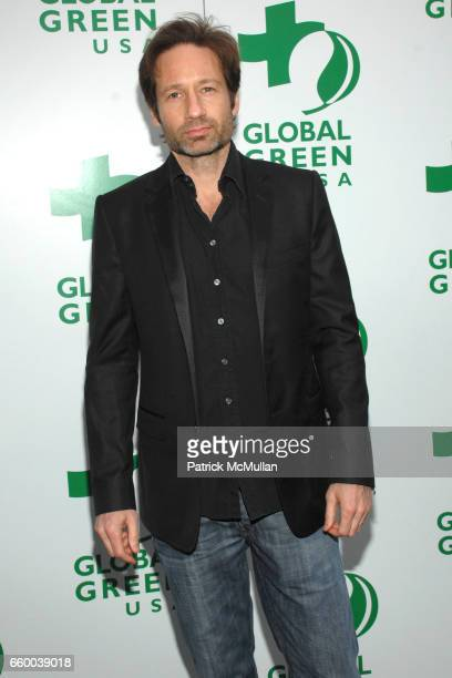 David Duchovny attends Global Green USA's 13th Annual Millennium Awards at Fairmont Miramar Hotel on May 30 2009 in Santa Monica California