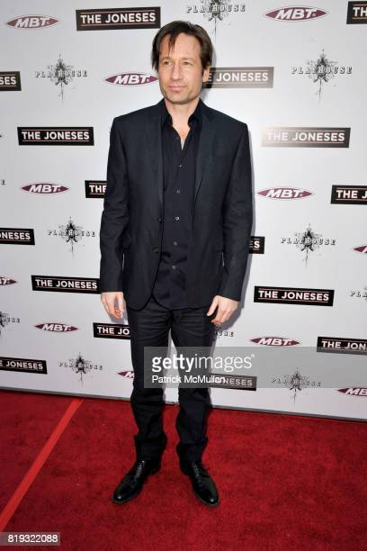 David Duchovny attends 'The Jonses' Los Angeles Premiere at ArcLight Cinemas on April 8 2010 in Hollywood California