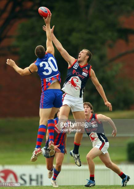David Fanning of Port Melbourne and Max Gawn of the Scorpions compete for the ball during the round two VFL match between Port Melbourne and the...