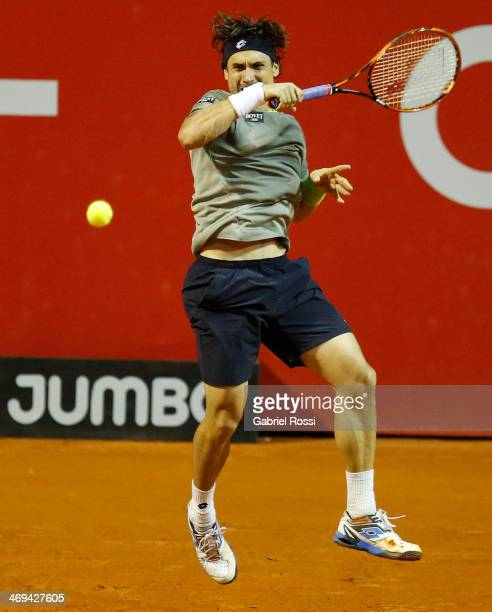 David Ferrer of Spain makes a shot during a tennis match between David Ferrer and Albert Ramos as part of ATP Buenos Aires Copa Claro on February 14...