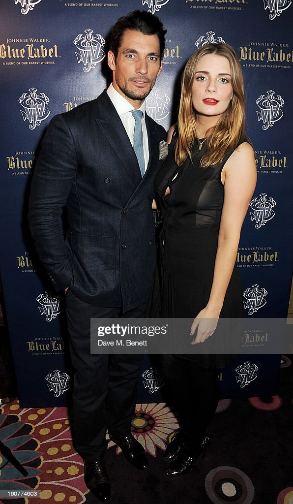 David Gandy (L) and Mischa Barton attend a party celebrating the new partnership between Johnnie Walker Blue Label and model David Gandy at Annabels on February 5, 2013 in London, England.