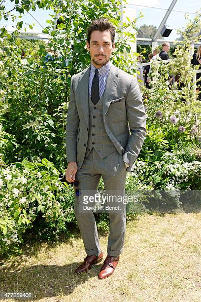 David Gandy arrives at the Burberry Menswear Spring/Summer 2016 show at Kensington Gardens on June 15 2015 in London England