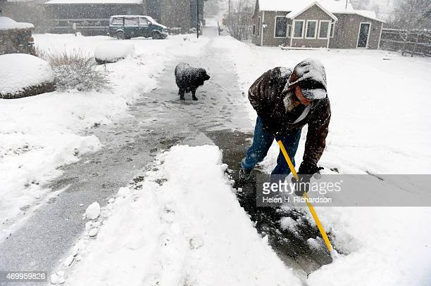 David Gregg with his large Newfoundland dog Izzy waiting patiently behind shovels the walkway and bridge outside of the Nederleand library in...