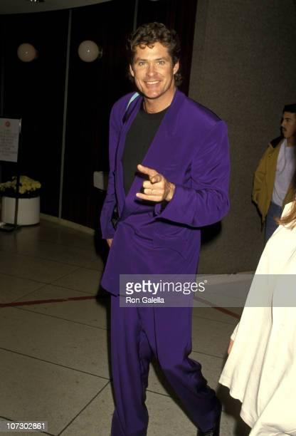 David Hasselhoff during David Hasselhoff Sighting at Los Angeles International Airport January 26 1994 at Los Angeles International Airport in Los...