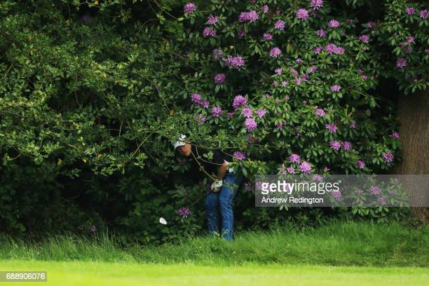 David Horsey of England looks on from the bushes on the 6th hole during day three of the BMW PGA Championship at Wentworth on May 27 2017 in Virginia...