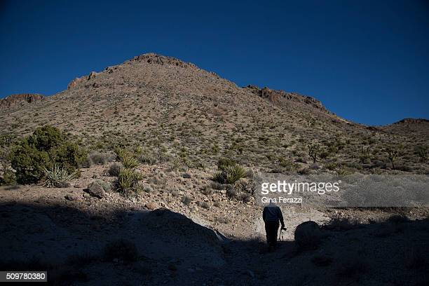 David Lamfrom director of California Desert and National Wildlife Programs walks out of the shadows in the Mojave Desert which President Obama has...
