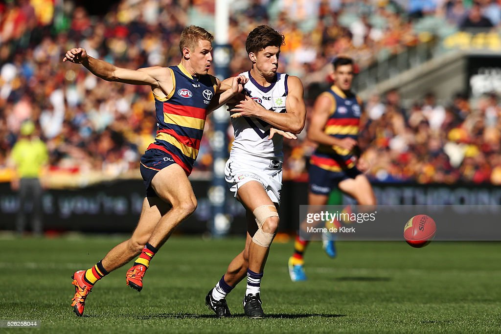 David Mackay of the Crows and Darcy Tucker of the Dockers competes for the ball during the round six AFL match between the Adelaide Crows and the Fremantle Dockers at Adelaide Oval on April 30, 2016 in Adelaide, Australia.