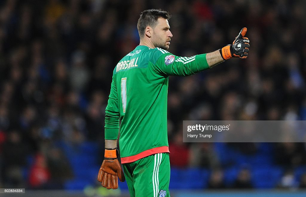 David Marshall of Cardiff City during the Sky Bet Championship match between Cardiff City and Nottingham Forest at the Cardiff City Stadium on December 29, 2015 in Cardiff, Wales.
