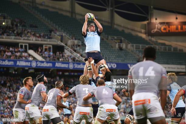 David McDuling of the Waratahs jumps at the lineout during the round nine Super Rugby match between the Waratahs and the Kings at Allianz Stadium on...