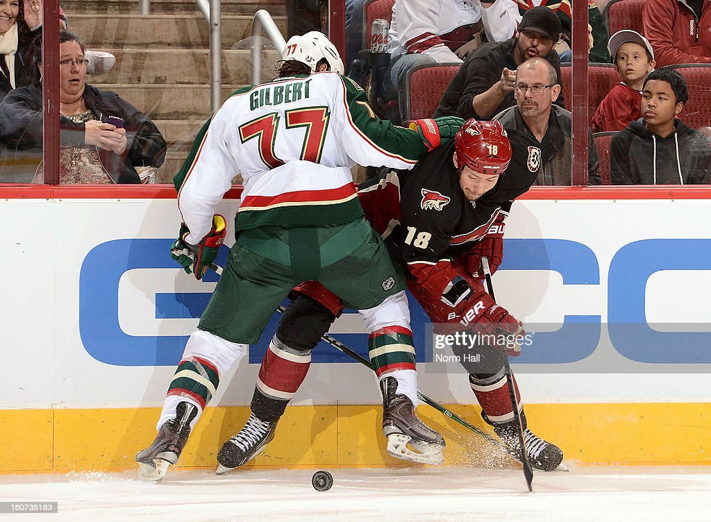 David Moss #18 of the Phoenix Coyotes battles for the puck along the boards with <a gi-track='captionPersonalityLinkClicked' href=/galleries/search?phrase=Tom+Gilbert&family=editorial&specificpeople=687083 ng-click='$event.stopPropagation()'>Tom Gilbert</a> #77 of the Minnesota Wild during the second period at Jobing.com Arena on February 4, 2013 in Glendale, Arizona.