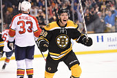 David Pastrnak of the Boston Bruins celebrates a goal against the Florida Panthers at the TD Garden on March 31 2015 in Boston Massachusetts