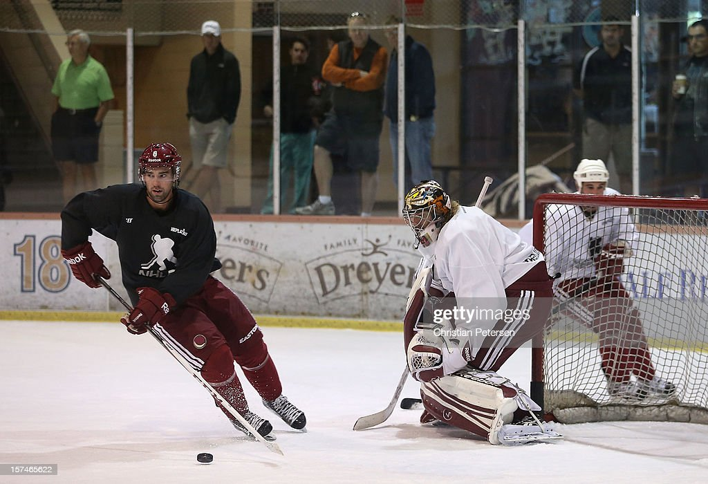 <a gi-track='captionPersonalityLinkClicked' href=/galleries/search?phrase=David+Schlemko&family=editorial&specificpeople=3144738 ng-click='$event.stopPropagation()'>David Schlemko</a> #6 of the Phoenix Coyotes participates in a workout at the Ice Den on December 3, 2012 in Scottsdale, Arizona. More than a dozen players from around the league that are not able to play during the NHL lockout have been attending workouts at the Phoenix Coyotes practice rink.
