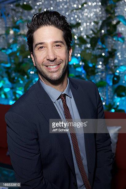 David Schwimmer attends Michigan Avenue Magazine Celebrates Cover Star David Schwimmer With Russian Standard Vodka At The Dec Rooftop Lounge Bar on...