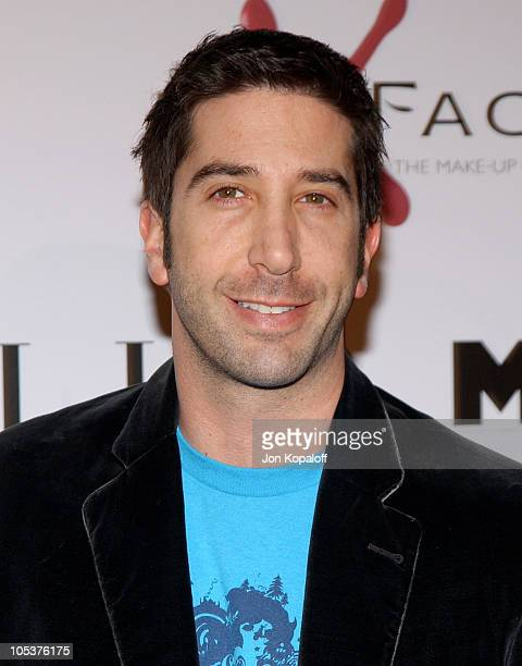 David Schwimmer during 'The Aviator' Los Angeles Premiere Arrivals at Grauman's Chinese Theatre in Hollywood California United States