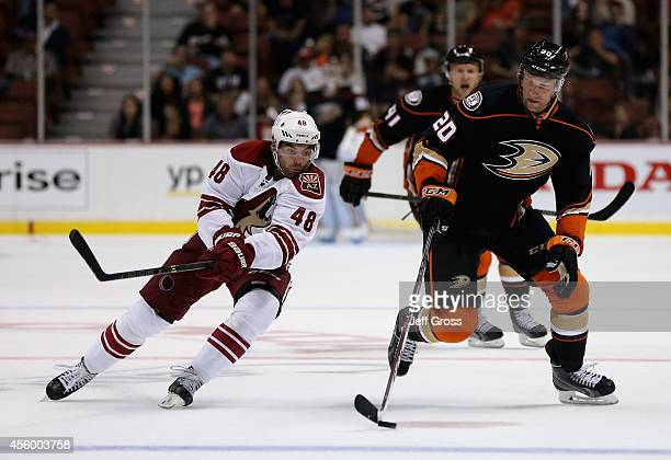 David Steckel of the Anaheim Ducks is pursued by Jordan Martinook of the Arizona Coyotes for the puck in the third period at Honda Center on...