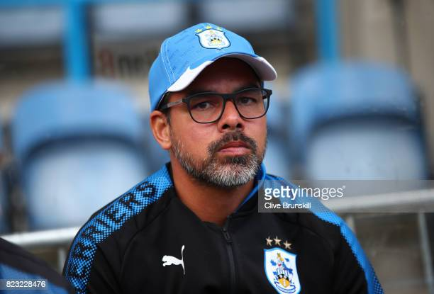 David Wagner manager of Huddersfield Town during the pre season friendly match between Huddersfield Town and Udinese at Galpharm Stadium on July 26...