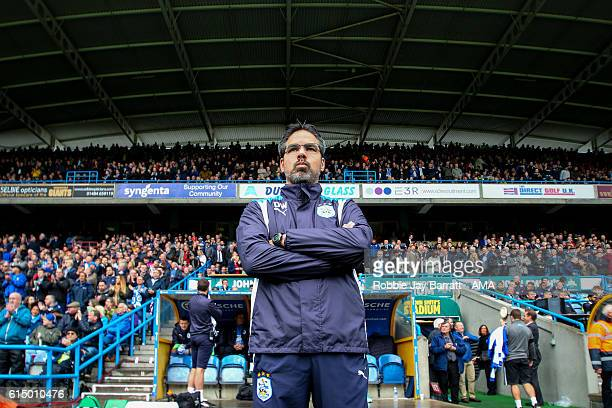 David Wagner manager of Huddersfield Town during the Sky Bet Championship match between Huddersfield Town and Sheffield Wednesday at John Smith's...