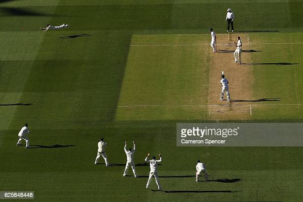 David Warner of Australia attempts a catch off a delivery by Jackson Bird of Australia during day three of the Third Test match between Australia and...