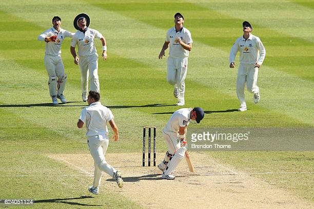 David Warner of the Blues is dismissed by Scott Boland of the Bushrangers during day two of the Sheffield Shield match between New South Wales and...