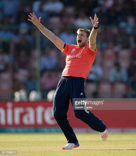 David Willey of England successfully appeals for the wicket of Mohammad Shahzad of Afghanistan during the ICC World Twenty20 India 2016 Group 1 match...