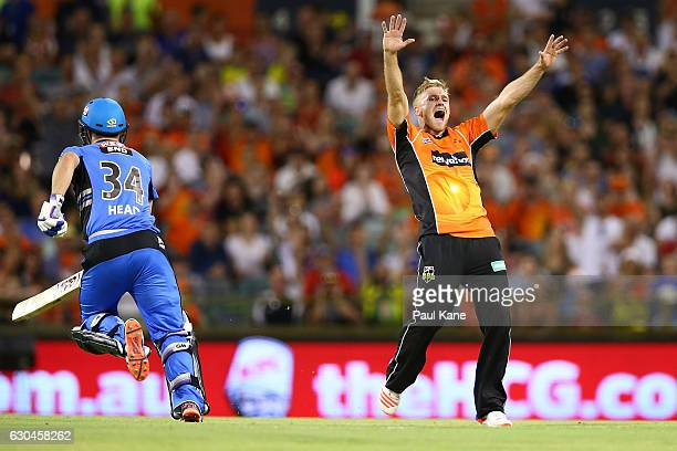 David Willey of the Scorchers appeals successfully for the wicket of Jake Weatherald of the Strikers during the Big Bash League between the Perth...