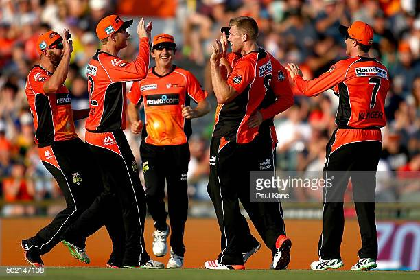 David Willey of the Scorchers celebrates the wicket of Tim Ludeman of the Strikers during the Big Bash League match between Perth Scorchers and...