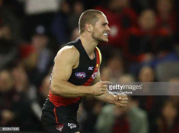 David Zaharakis of the Bombers celebrates after scoring a goal during the round 18 AFL match between the Essendon Bombers and the North Melbourne...
