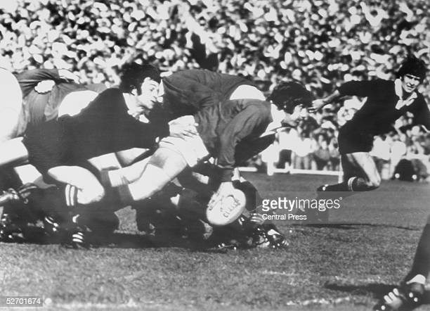 IJ Davis of the New Zealand All Blacks grounds an attempt by DW Morgan of the British Lions to clear the scrum during a rugby test match at Auckland...