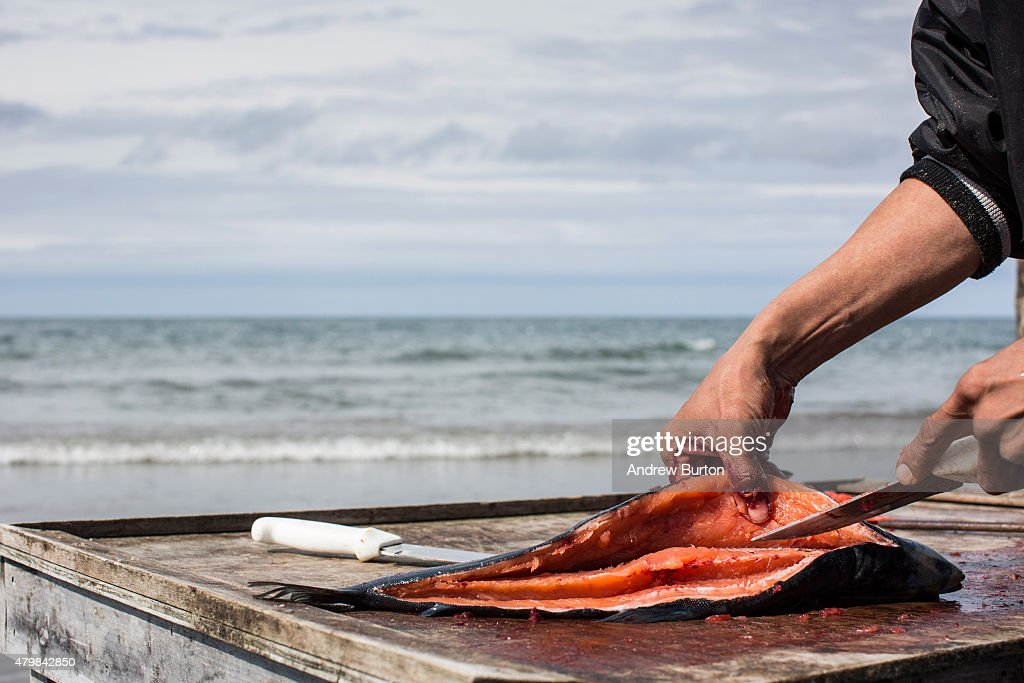 Davis Sockpick prepares freshly caught salmon on the beach along the Chukchi Sea on July 7 2015 in Shishmaref Alaska Earlier this year the Obama...