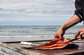 Davis Sockpick prepares freshly caught salmon on the beach along the Chukchi Sea on July 7 2015 in Shishmaref Alaska Earlier this year the Obama...