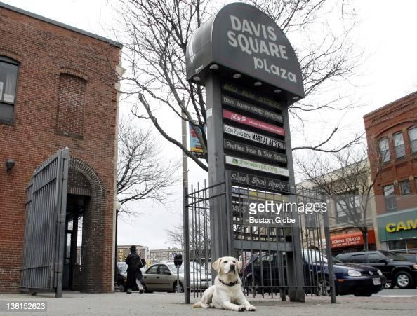 Davis Square Fast Food