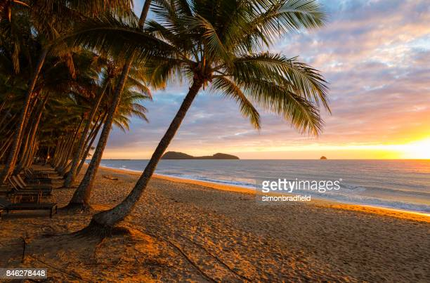 Dawn At Palm Cove, Queensland, Australia