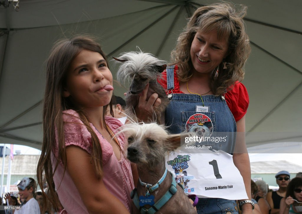 Dawn Goehring (R) of Gatlinburg, Tennesse, holds her dog Miss Ellie, a Chinese Crested, as she looks at Lydon Oliveras sticking her tongue out like her dog Spam-O-rama before the start of the 21st Annual World's Ugliest Dog Contest at the Sonoma-Marin Fair June 26, 2009 in Petaluma, California. Pabst, a four year-old boxer mix won the annual World's Ugliest Dog contest.