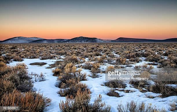 Dawn in the High Desert