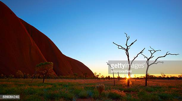 Dawn Light At Uluru