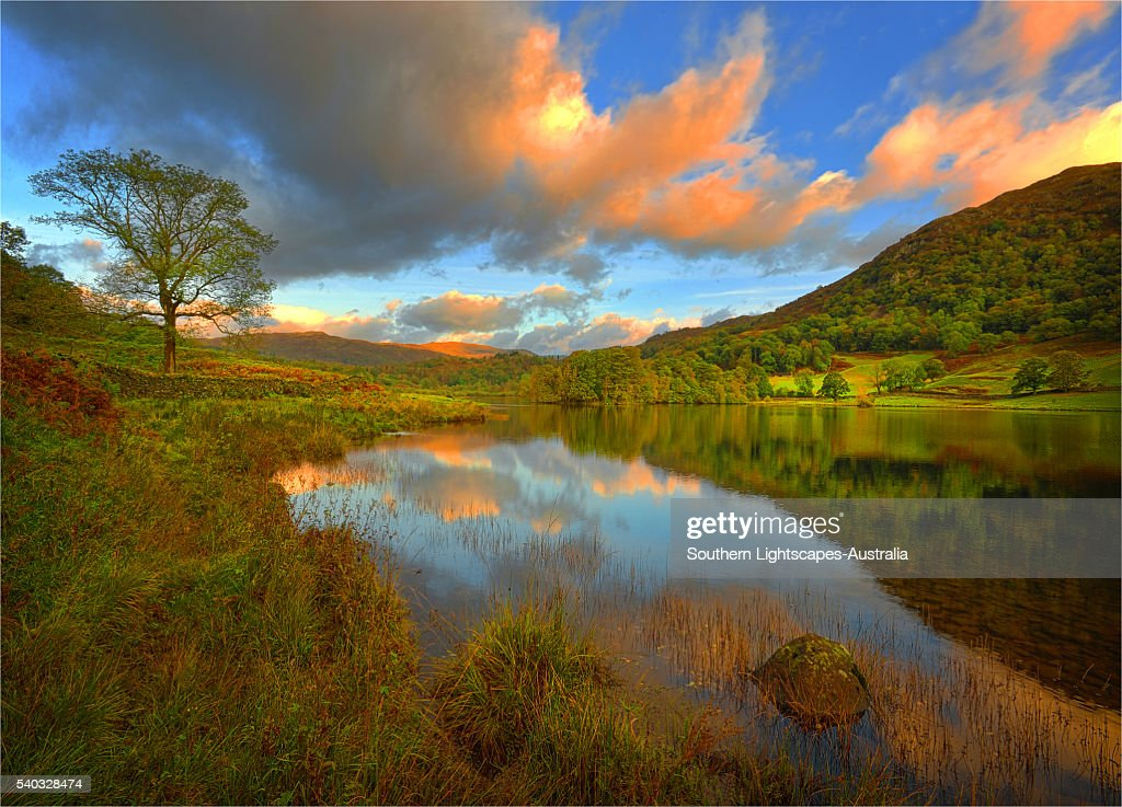 Dawn light on Rydal water, the Lakes District, Cumbria, England, United Kingdom.