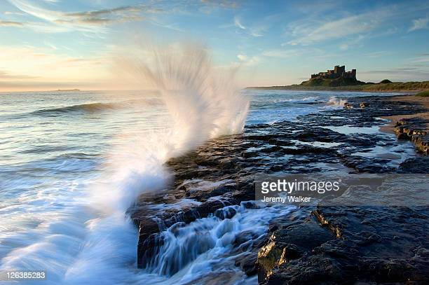 Dawn light with waves breaking on the rugged coastline looking towards Bamburgh Castle in Northumberland. Bamburgh Castle is one of England's most famous castles. Built on a basalt outcrop above majestic sand dunes, its ramparts tower over the shifting hue
