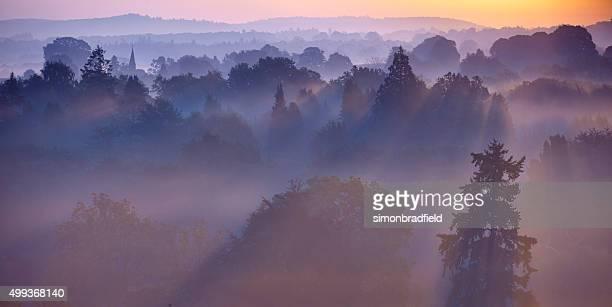 Dawn Mist In The Surrey Hills